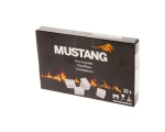 Mustang ignition cubes